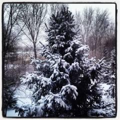 It's Winter in Minnesota